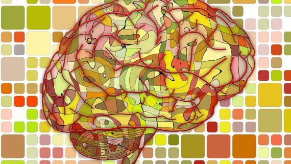 Sporten houdt het brein jong